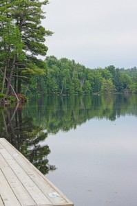 Muskoka River just off Brunel Rd - photo Bill Nickerson